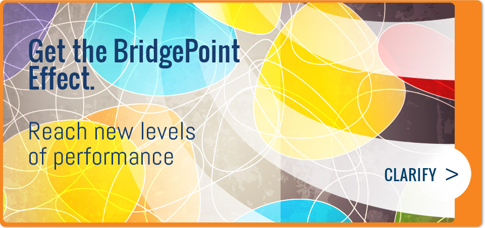 BridgePoint Effect Helps you Clarify